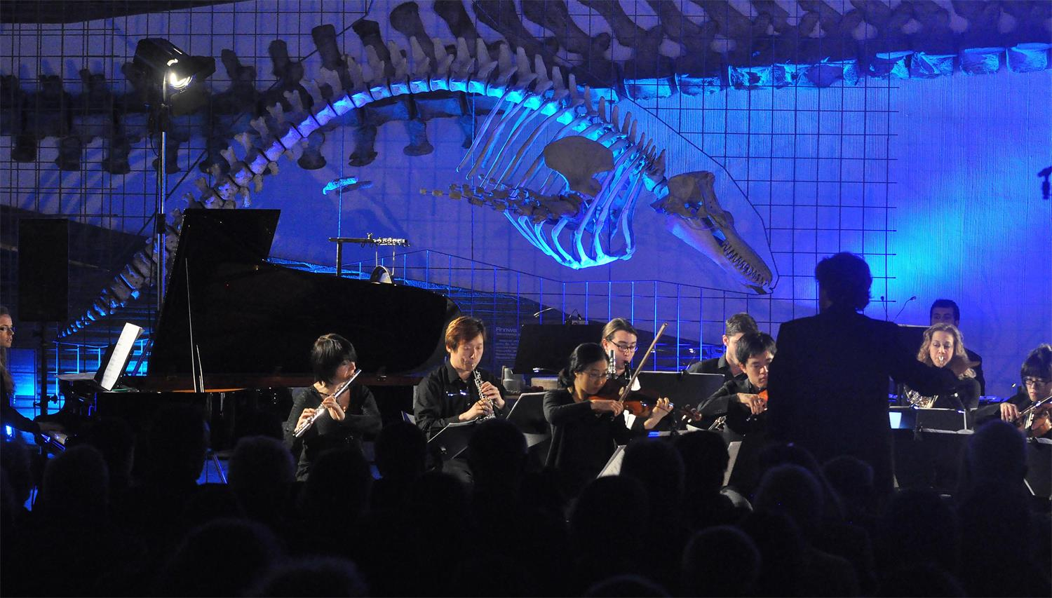 Concert series Bestiarium at Senckenberg Museum, in cooperation with HfMDK Frankfurt (c) Björn Hadem